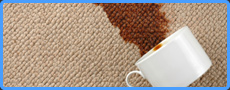 Chicago upholstery cleaning & carpet cleaning Chicago,IL